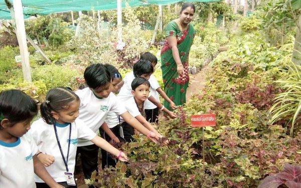 Những bài tập hè thú vị cho phụ huynh Ấn Độ dạy con