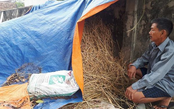 Dân hoang mang sống ở ngôi làng 3 năm xảy ra 40 vụ cháy