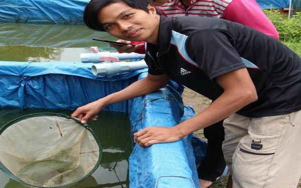 Vượt thất bại, kỹ sư thủy sản thành 'vua cá chạch lấu'