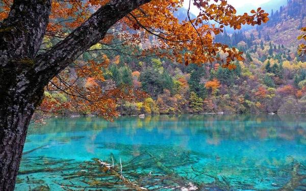 8 nơi có làn nước trong xanh tuyệt đẹp