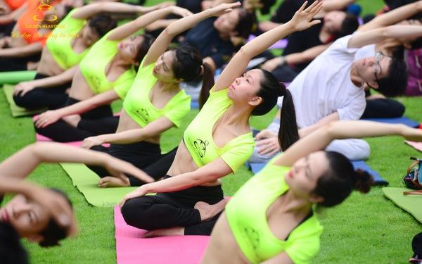 Trái Tim Vàng: Đưa Yoga và Thiền trở thành nghề của của người Việt
