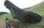 /dao-phuc-sinh-va-nhung-buc-tuong-moai-bi-an-2018051022533589.htm