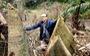 'Lâm tặc' lấy hàng trăm cây gỗ, kiểm lâm, chính quyền vẫn...giải trình