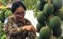 Mũ nồi xanh Việt Nam ở Nam Sudan - Kỳ 4: Ngồi bên nhau uống tách trà