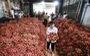 Liên minh HTX Việt Nam làm việc với Saigon Co.op: Thúc đẩy chuỗi liên kết, tiêu thụ sản phẩm